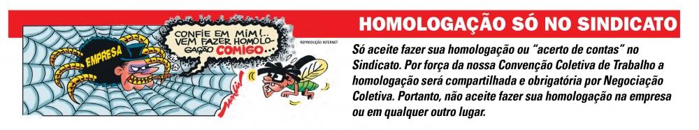 homologacaoConteudo
